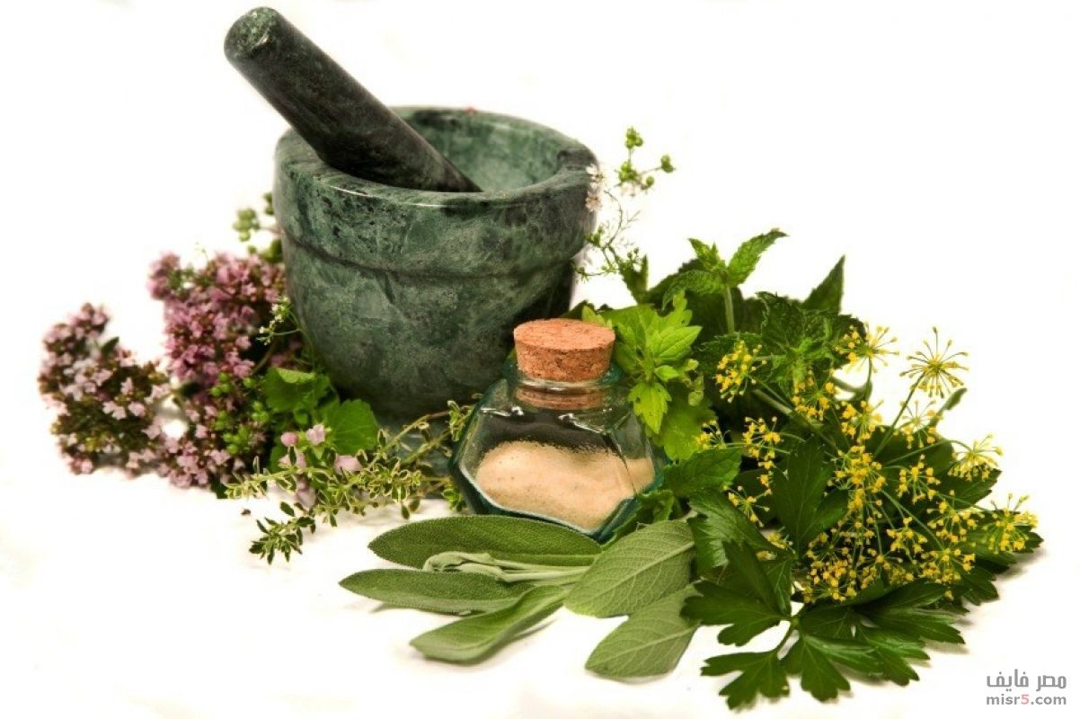 Herbal Remedies : What Are the Benefits of Herbs ?